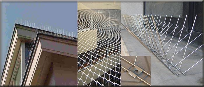 شركة مكافحة الحمام بالأحساء 0551603738 تركيب طارد الحمام و الطيور – زهرة الخليج